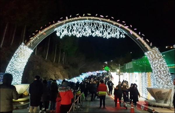 1.보성차밭빛축제,겨울철전국대표축제로급부상!  (1).jpg