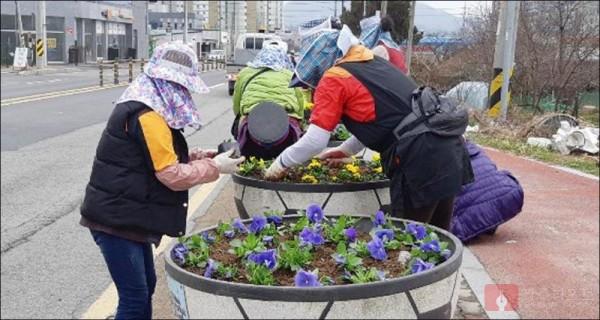 4_화순읍 봄꽃식재 사진3.jpg
