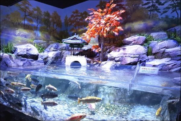 섬진강어류생태관.jpg