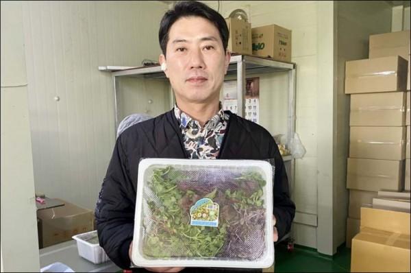 친환경 새싹채소 부농1.jpeg