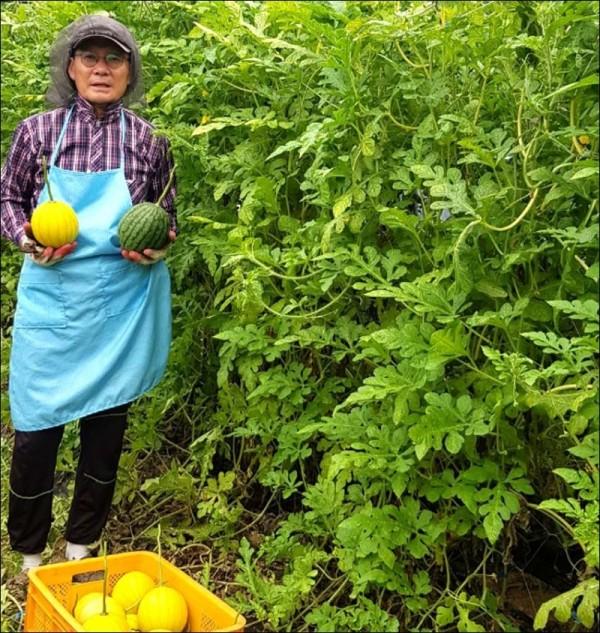 장흥 친환경 애플수박재배농가 이상환씨2.jpg