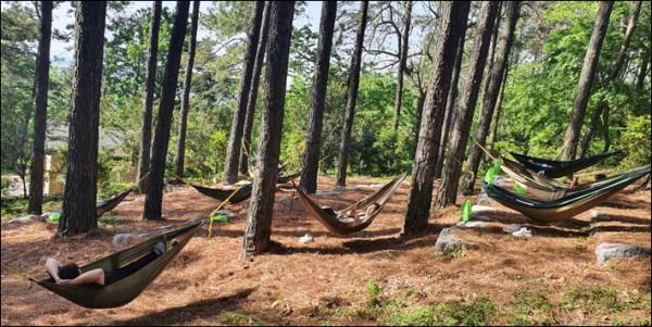산림복지서비스(해먹체험).jpg