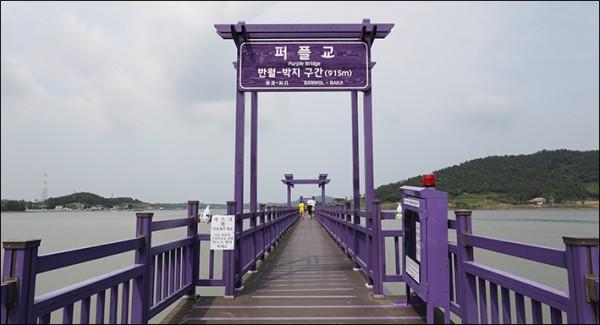 8월 관광지- 신안 퍼플교(반월도_박지도 915m).JPG