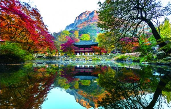 전국체전 홍보- 장성 백양사 쌍계루.jpg
