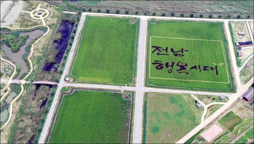 '전남 행복시대' 색깔벼 논 그림 감상하세요