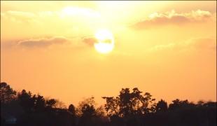 보성갯벌 '한국의 갯벌'로 등재... 유네스코 세계유산 국내 15번째