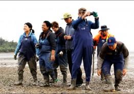 '한국의 갯벌' 세계자연유산 등재 전망 밝아