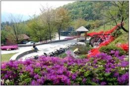 화순군, 백아산자연휴양림 등 산림 휴양시설 운영 재개