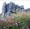 광주시, 오는 11일 올해 첫 무등산 정상 개방
