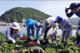 전남에서 먼저 살아보기' 농촌형 프로그램 인기
