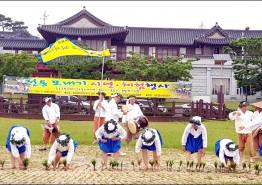 전통 모내기 체험 행사 열린다