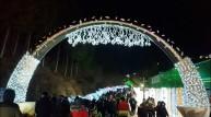 보성차밭 빛 축제, 겨울철 전국 대표축제 '자리매김'