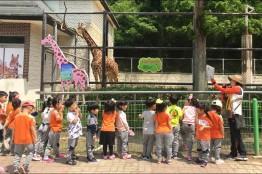 광주 우치동물원, 다양한 교육프로그램 운영