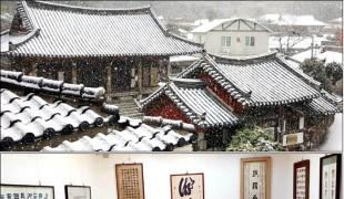 진도 장전미술관, 묵향 & 유화 그리고 유채꽃