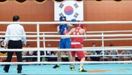 화순군선수단, 배드민턴ㆍ복싱ㆍ수영 '승승장구'